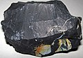 Zaleski Flint (Middle Pennsylvanian; west of Creola, northern Vinton County, Ohio, USA) 20.jpg