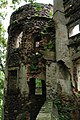 Zamek Świny 12.jpg