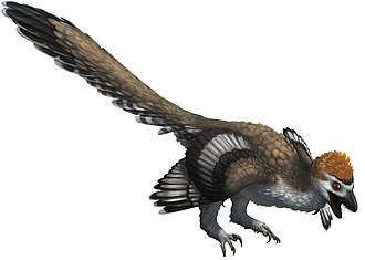 Zhenyuanlong - Image: Zhenyuanlong life restoration (white background)