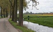Zuidermeer nl road