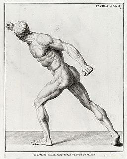 """""""Anatomia per uso...del disegno..."""", B. Genga, 1691 Wellcome L0009711"""