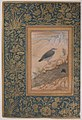 """Diving Dipper and Other Birds"", Folio from the Shah Jahan Album MET sf55-121-10-16a.jpg"