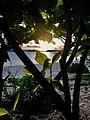 """SUNSET AT BURIAS ISLAND"".jpg"