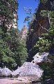 """"""" Canyon des Singes """" (9589928010).jpg"""