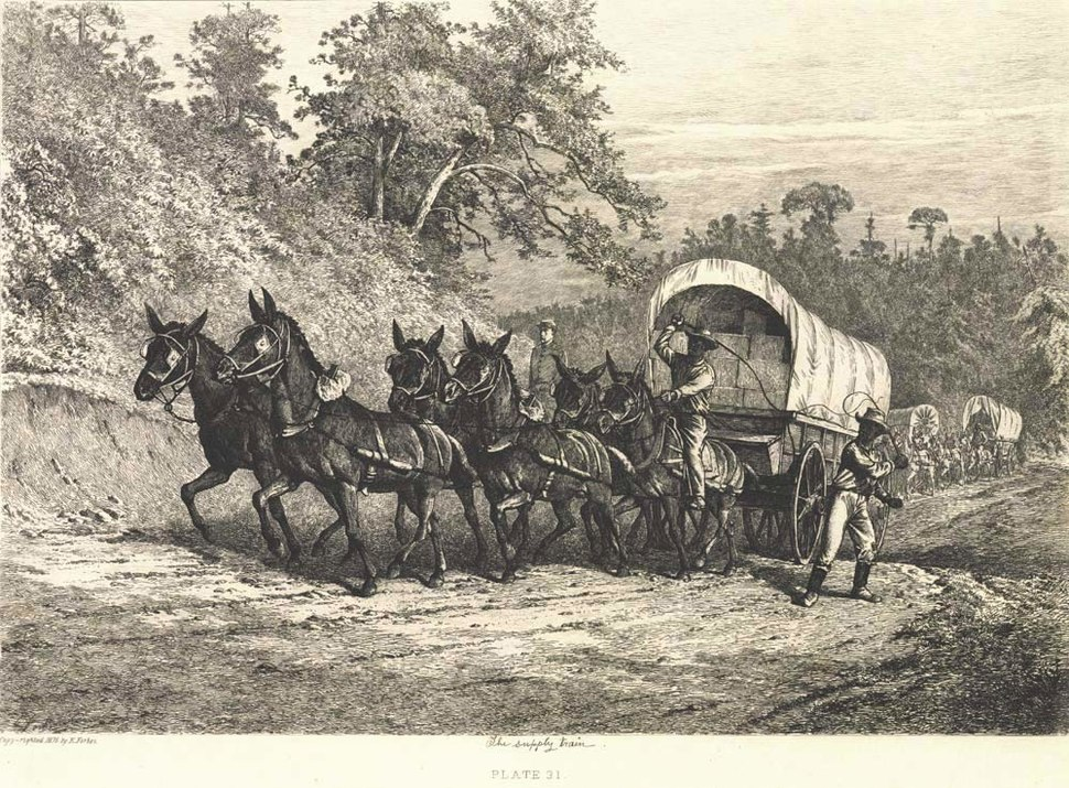 'The Supply Train' by Edwin Forbes 1876