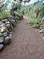 (Jardín Botánico de Quito) b2.JPG