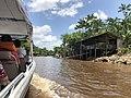 Área de Proteção Ambiental da Ilha do Combu Johanan Toledo (02).jpg