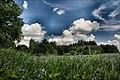Łopuchówka - panoramio (69).jpg