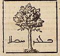 Œdipus Ægyptiacus, 1652-1654, 4 v. 2029b (26003381815).jpg