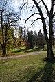Žampach, dolní zámecký park(J).jpg