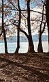 Παραλία Λίμνης Τριχωνίδας · Θέση Δογρή.jpg