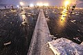 Авиакатастрофа в Ростове-на-Дону (31).jpg