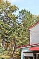 Біогрупа по вулиці Соборній, 2 у Кам'янець-Подільському. Фото 2.jpg