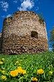 Вежа замку в травні.jpg