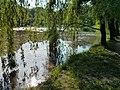 Верби над Оріхуватським озером.jpg