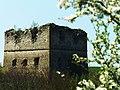 Залишки замку с. Сутківці.jpg