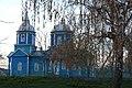 Летичівська церква і веснян берізка.jpg