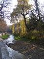 Парк, Ольховка.jpg