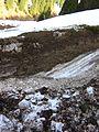 После схода ловины - panoramio - Anton Yefimov (1).jpg
