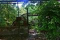 Сирецький дендрологічний парк DSC 0021.jpg