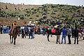 جشنواره شقایق ها در حسین آباد کالپوش استان سمنان- فرهنگ ایرانی Hoseynabad-e Kalpu- Iran-Semnan 12.jpg