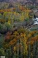 روستای دیورزم در پاییز - panoramio (1).jpg