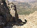 سەر شاخی کوڕە کاژاو - panoramio (12).jpg