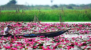Nakhon Sawan Province Province of Thailand