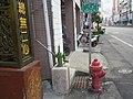 中山路旁的手動幫浦 - panoramio.jpg