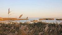 内蒙古 阿拉善盟 居延海湿地公园 - panoramio.jpg