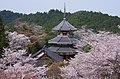 南朝妙法殿(金輪王寺・吉野朝皇居跡) Nanchō-myōhōden, the site of Kinrin-nōji 2014.4.12 - panoramio.jpg