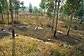 合山市风光Scenery in Guangxi Heshan - panoramio - jiang-wen-jie (2).jpg