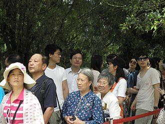 Three Links - Chinese Mainland visitors in Taiwan