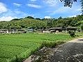 岐峰村 - Qifeng Village - 2015.09 - panoramio.jpg