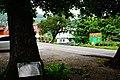 樹林口老樹 Shulinkou Old Trees - panoramio.jpg
