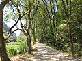水帘洞景区的道路 - panoramio.jpg