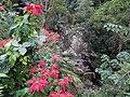 神仙谷 Fairy Valley - panoramio (1).jpg