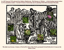 Witchhunt  Wikipedia Transition To The Early Modern Witchhuntsedit Buy Essay Papers Online also Essays About Science  Persuasive Essays For High School