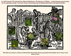 Witch-hunt - The Malleus Maleficarum (the 'Hammer against the Witches'), published in 1487, accused women of destroying men by planting bitter herbs throughout the field.