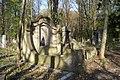 1405viki Cmentarz żydowski przy ul. Lotniczej. Foto Barbara Maliszewska.jpg