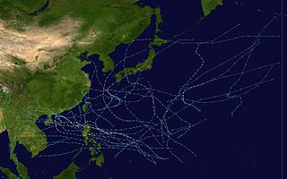 1974 Pacific typhoon season typhoon season in the Pacific Ocean