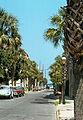 1979-08-14-Charleston-141.jpg