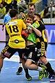 20180427 HLA 2017-18 Quarter Finals Westwien vs. Bregenz Samuel Kofler 850 8239.jpg