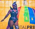 2019.06.09 Capital Pride Festival and Concert, Washington, DC USA 1600081 (48038003483).jpg