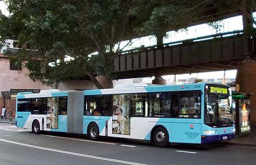 sydney bus 144 - photo#16