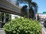 3720NAIA Expressway NAIA Road, Pasay Parañaque City 03.jpg