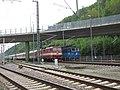 372 007-5 und 371 004-3 Bad Schandau.jpg
