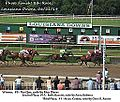 8th-race-LAD-062114 (14313591190).jpg