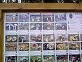 95698 Neualbenreuth, Germany - panoramio (9).jpg