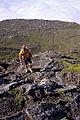 Açores 2010-07-22 (5132927210).jpg